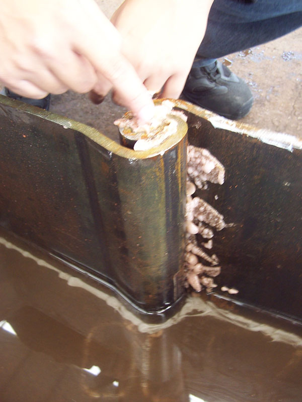 Wasserdicht Dichtstoffe für Grand Stahlpfähle auf Niederländisch